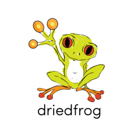 Driedfrog Design Studio