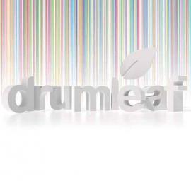 Drumleaf